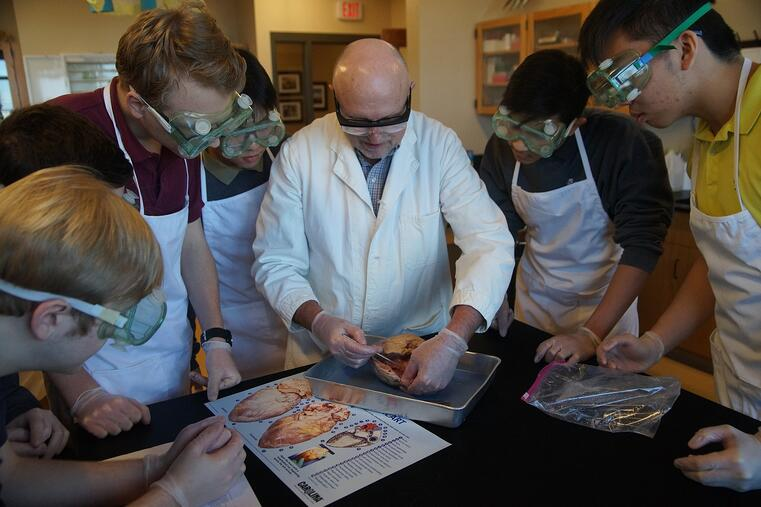 a teacher dissecting a heart in front of students